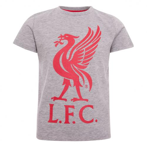LFC Boys Grey Liverbird Tee