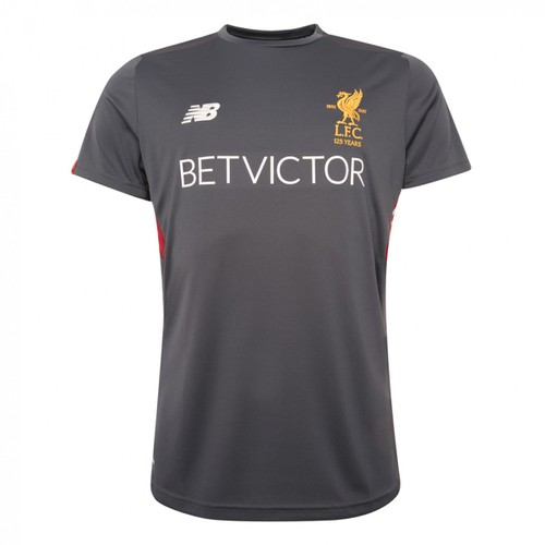 Liverpool FC Thunder Grey Training Short Sleeve Jersey 17-18